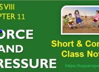 Force and Pressure Class 8 Notes Pdf Download